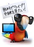 ブックメーカーライブ中継